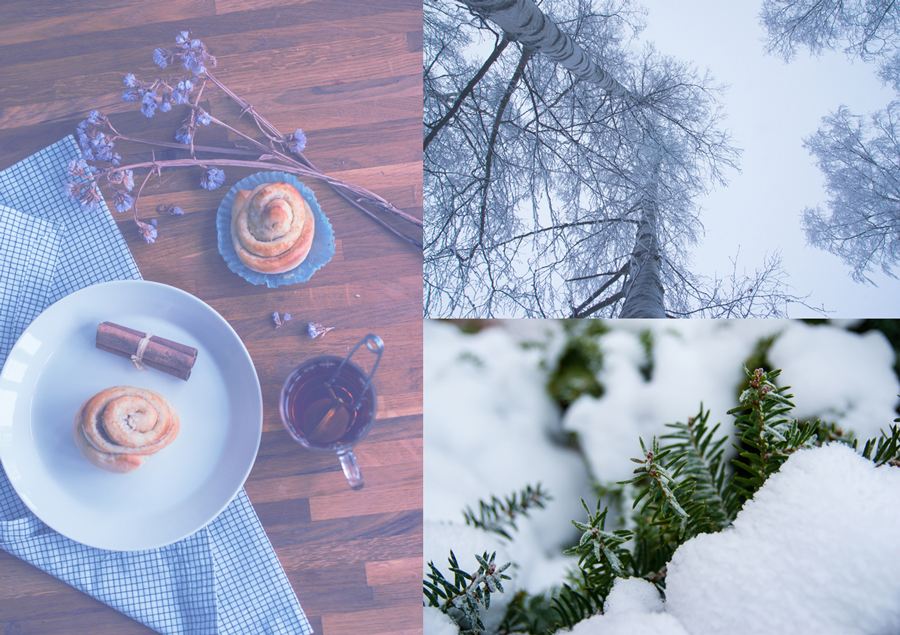 Mood Board for January, cinnabon, tea, winter bush, snow on birch trees, Photo by Victoria P. Ben-Chivar